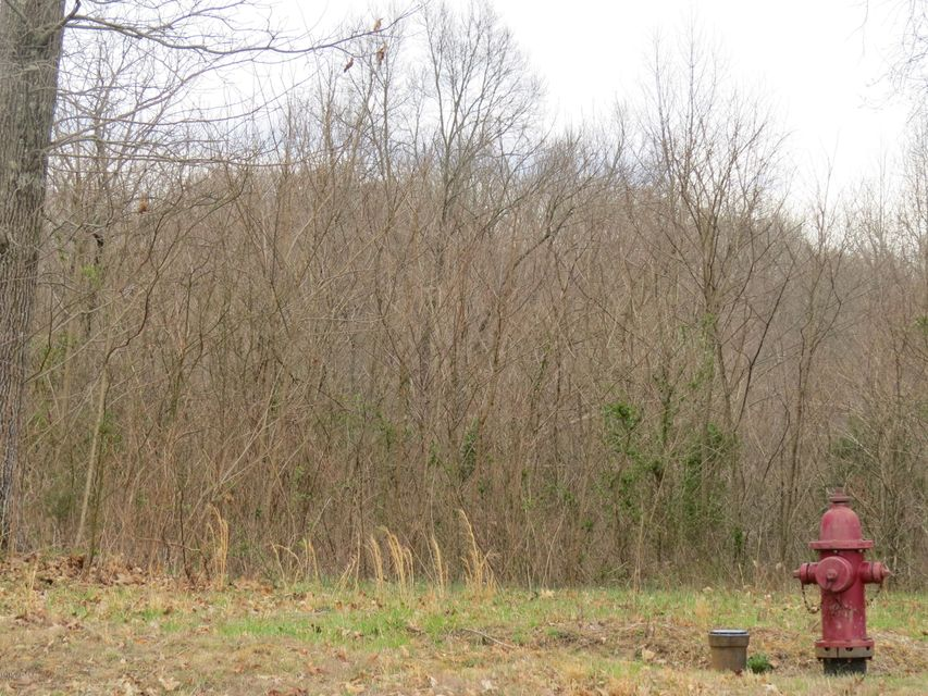 Additional photo for property listing at 43 Locust Grove  Bedford, Kentucky 40006 United States