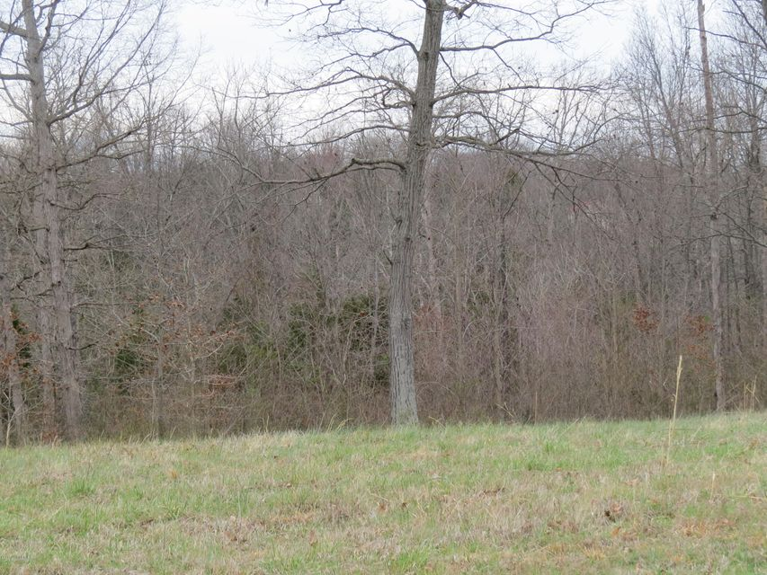 Additional photo for property listing at 45 Locust Grove  Bedford, Kentucky 40006 United States