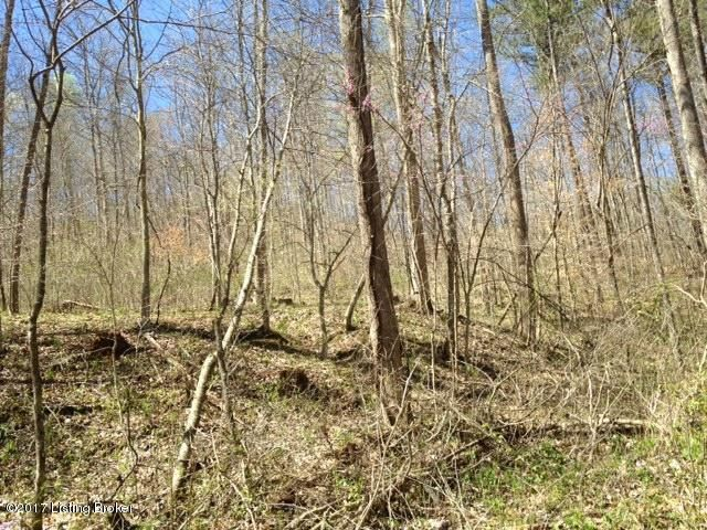Additional photo for property listing at 700 Dutch Creek  Burkesville, Kentucky 42717 United States
