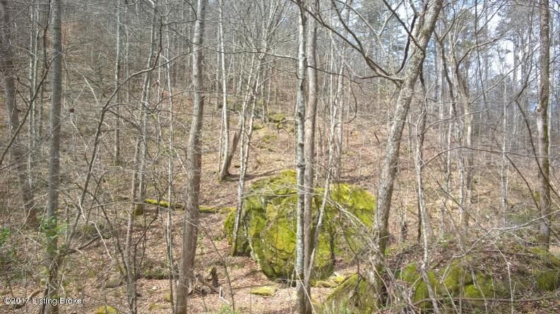 Additional photo for property listing at Happy Hollow  Somerset, Kentucky 42503 United States