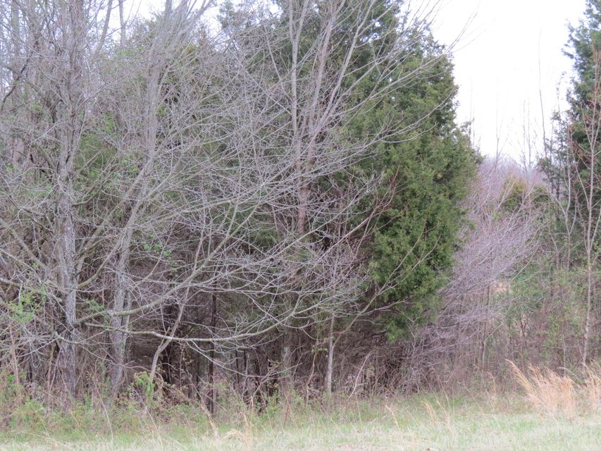 Additional photo for property listing at 51 Bell  Bedford, Kentucky 40006 United States