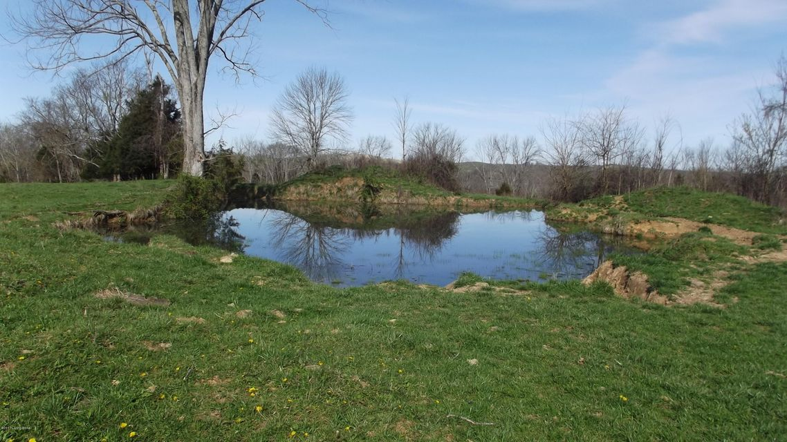 Land for Sale at Fallen Timber Sulphur, Kentucky 40070 United States