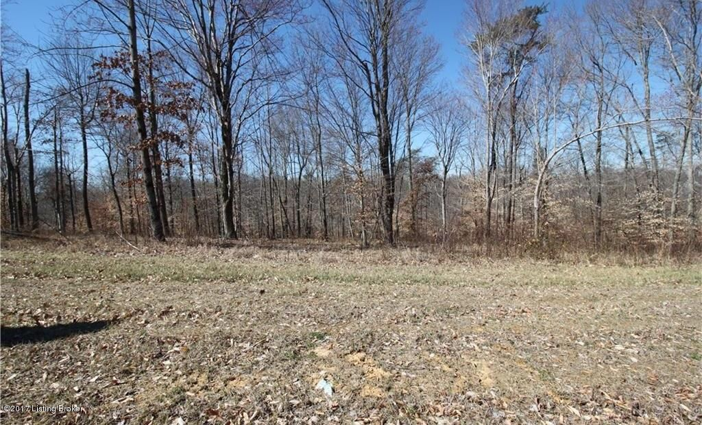 Land for Sale at 6008 Timbers Georgetown, Indiana 47122 United States