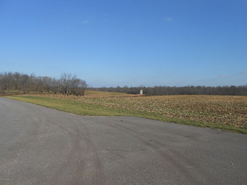 Land for Sale at 2 Gingko 2 Gingko Shelbyville, Kentucky 40065 United States