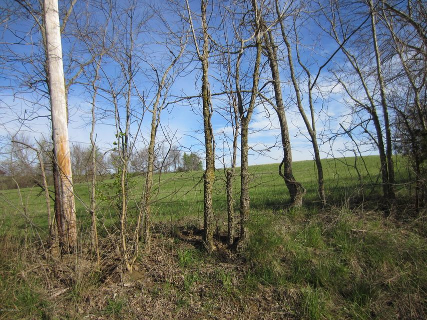 Land for Sale at Tract 4 Bloomfield Taylorsville, Kentucky 40071 United States