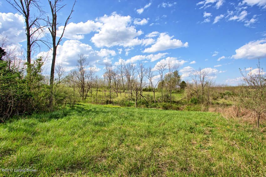 Additional photo for property listing at 28 Silverview  Smithfield, Kentucky 40068 United States