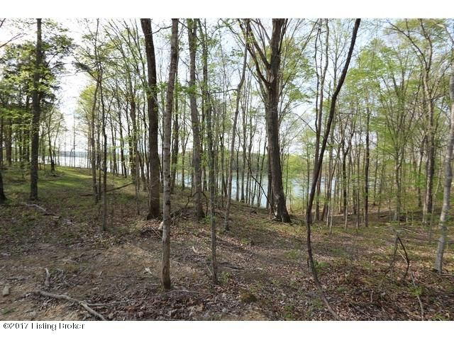 Land for Sale at 40 Averi Gray Ridge Mammoth Cave, Kentucky 42259 United States