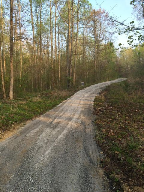 Land for Sale at 500 BRIARWOOD Leitchfield, Kentucky 42754 United States