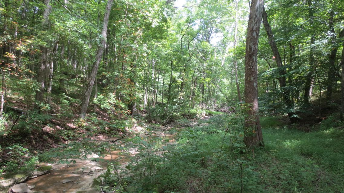 Additional photo for property listing at 1160 Mount Gilead Road  New Castle, Kentucky 40050 United States