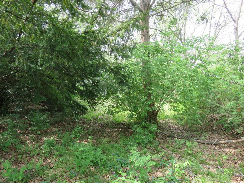 Additional photo for property listing at 4518 Cane Run  Louisville, Kentucky 40216 United States