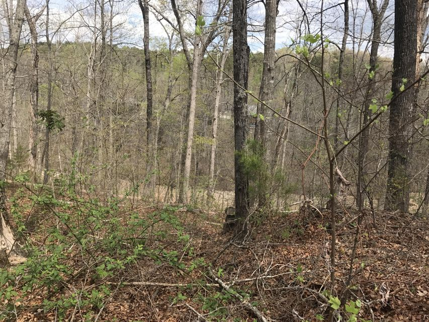 Land for Sale at 258a Lakeview 258a Lakeview Mammoth Cave, Kentucky 42259 United States