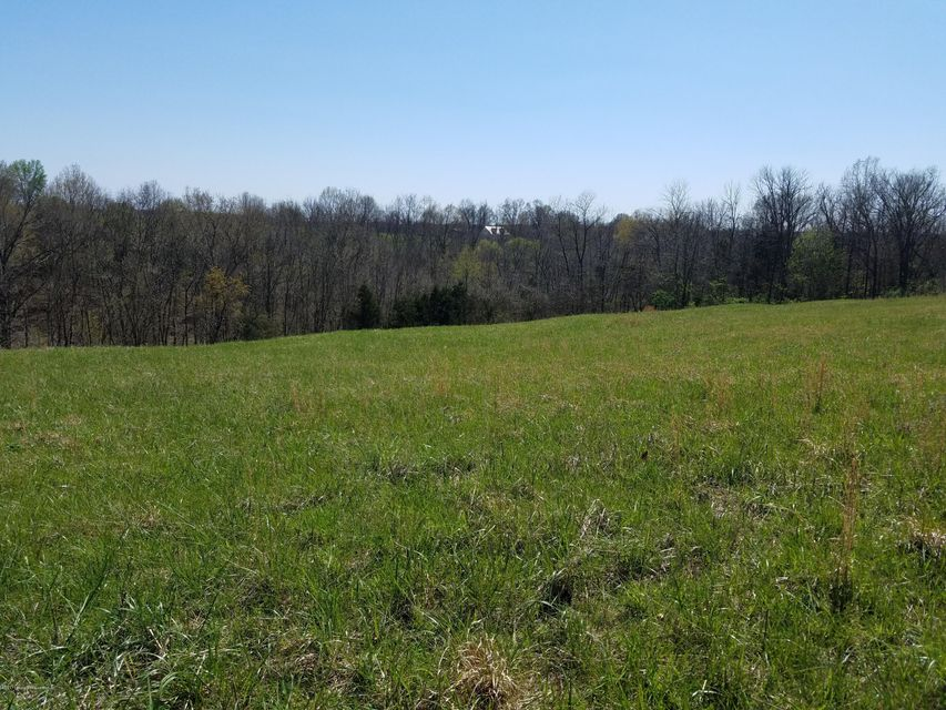 Land for Sale at 3575 Ashes Creek Bloomfield, Kentucky 40008 United States