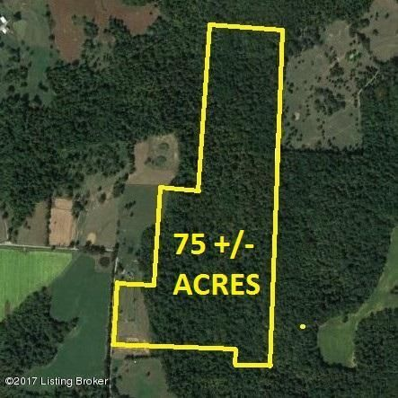 Land for Sale at Alex Willis Guston, Kentucky 40142 United States