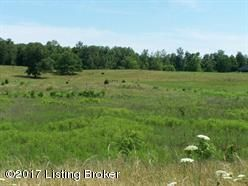 Land for Sale at Lot 2A White Lot 2A White Cecilia, Kentucky 42724 United States