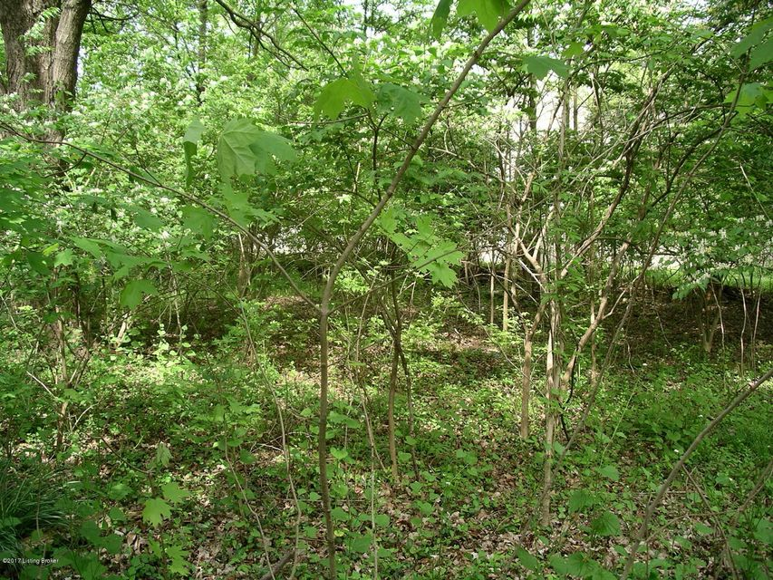 Additional photo for property listing at 1808 N English Station  Louisville, Kentucky 40223 United States