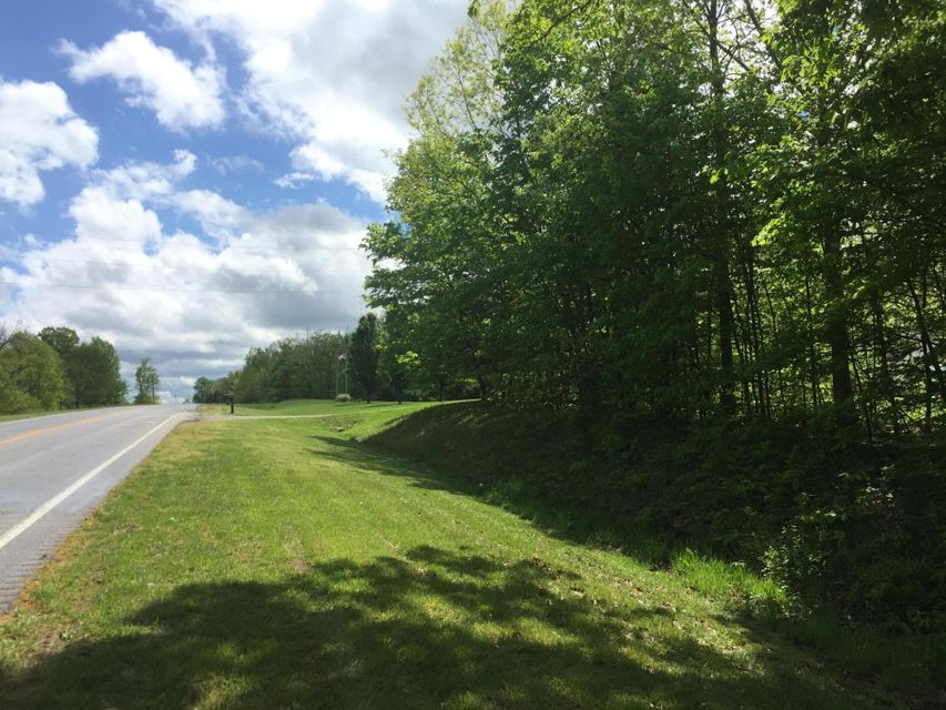 Land for Sale at Lot 4 Briar Ridge Mount Eden, Kentucky 40046 United States
