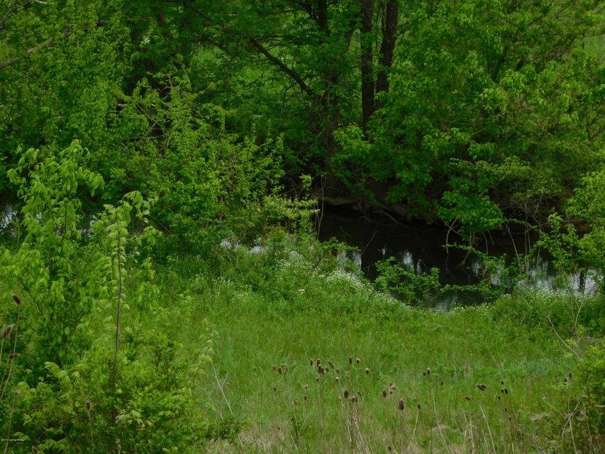 Additional photo for property listing at Tct 1 Frankfott  Lawrenceburg, Kentucky 40342 United States