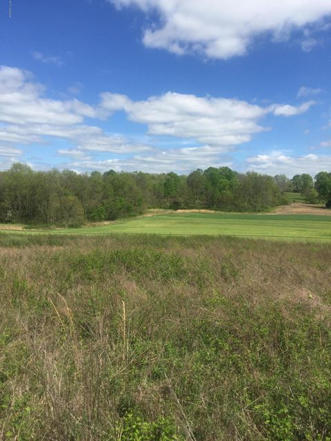 Land for Sale at Palmer Mount Eden, Kentucky 40046 United States