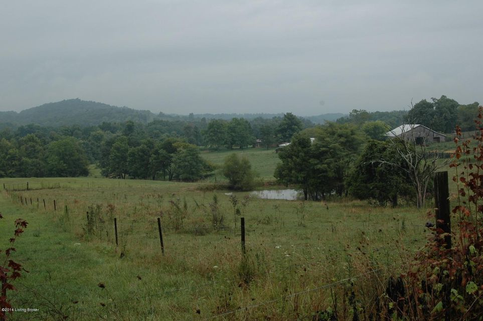 Additional photo for property listing at 5868 Duff Road  Falls Of Rough, Kentucky 40119 United States