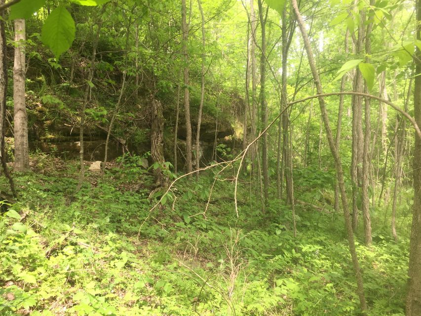 Additional photo for property listing at HWY 105 Beach Fork Bridge HWY 105 Beach Fork Bridge Hardinsburg, Kentucky 40143 United States