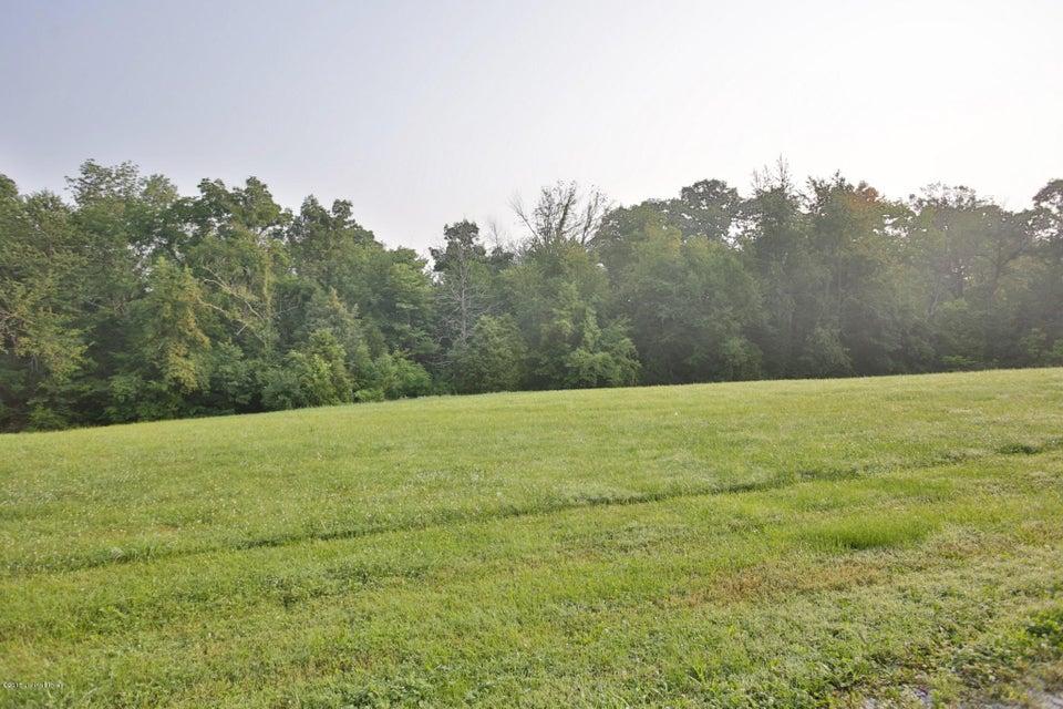 Land for Sale at 344 Henry Veech Finchville, Kentucky 40022 United States