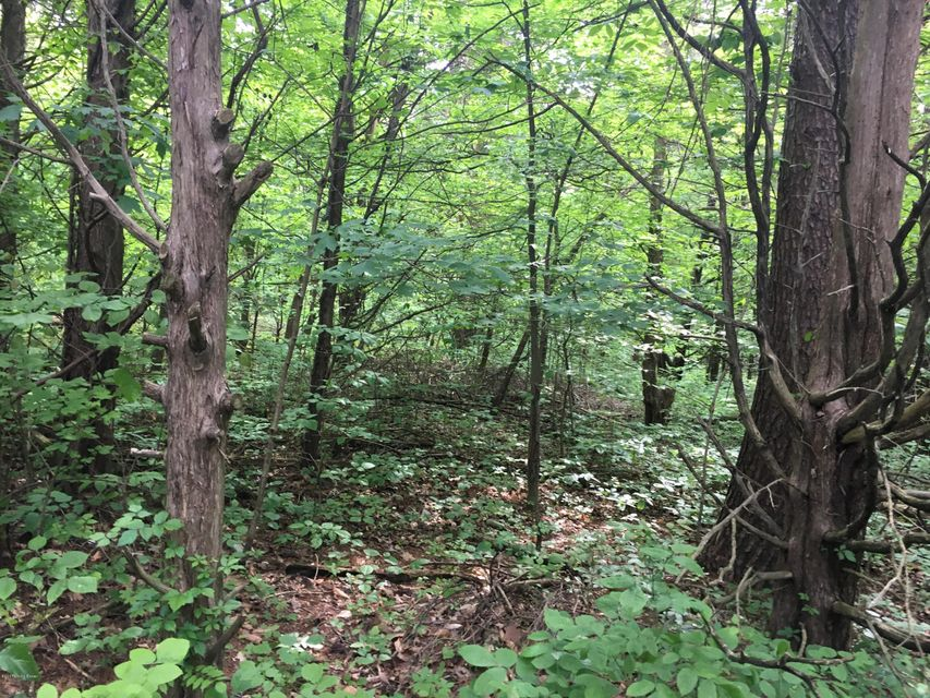 Additional photo for property listing at E Hwy 44  Shepherdsville, Kentucky 40165 United States