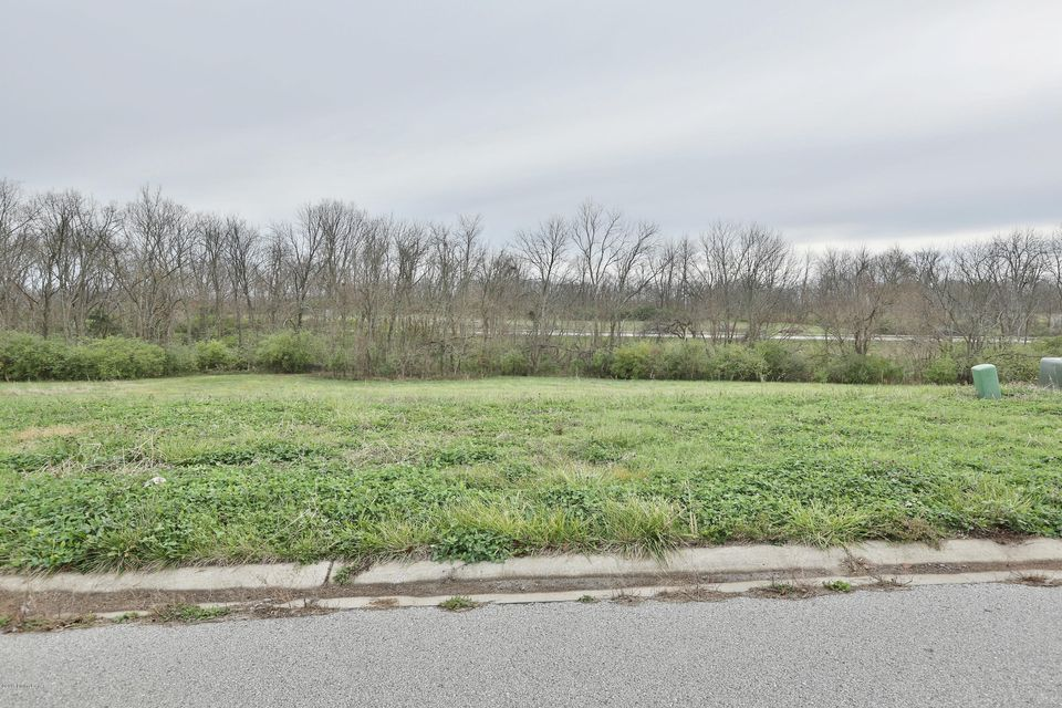 Land for Sale at 79 Barlows Brook Shelbyville, Kentucky 40065 United States