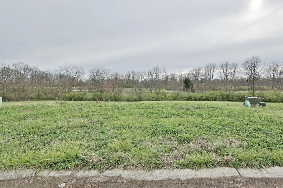 Land for Sale at 77 Barlows Brook 77 Barlows Brook Shelbyville, Kentucky 40065 United States