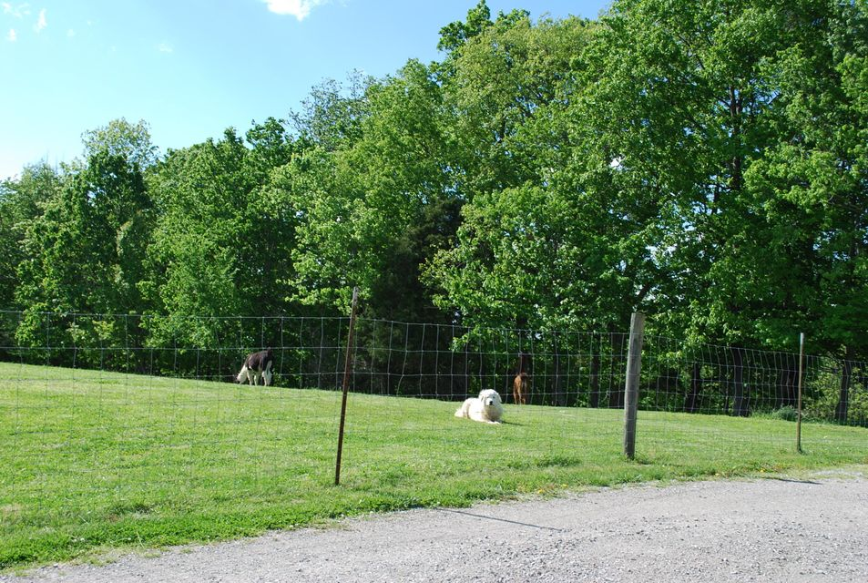 Additional photo for property listing at 1279 Mound Hill Road 1279 Mound Hill Road Carrollton, Kentucky 41008 United States