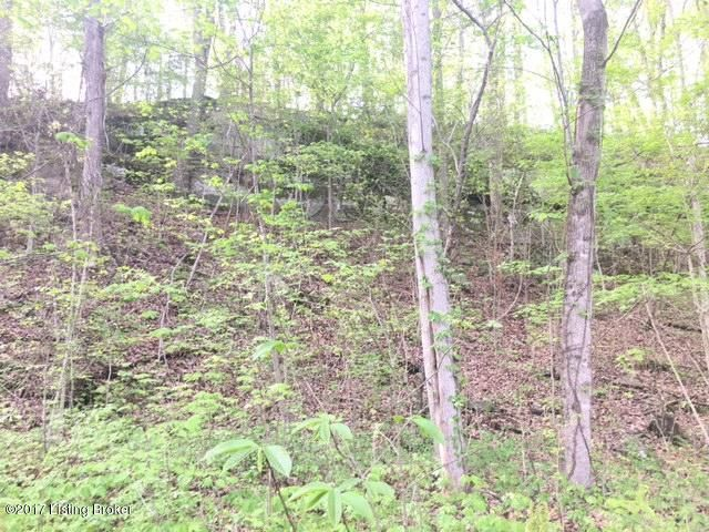 Additional photo for property listing at 17 Nolin River 17 Nolin River Leitchfield, Kentucky 42754 United States