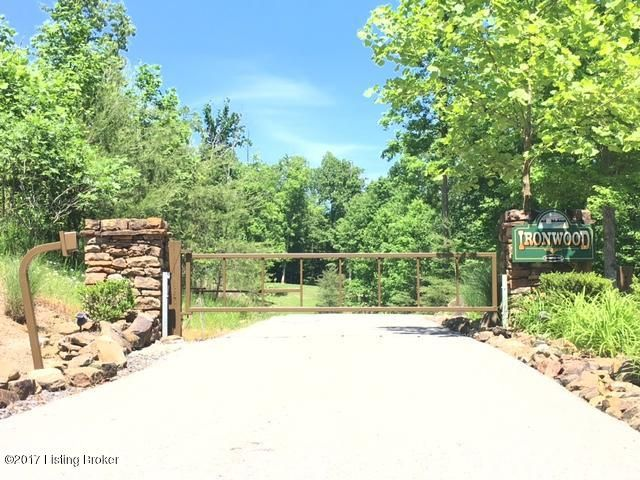Land for Sale at 1 Ironwood Bee Spring, Kentucky 42207 United States