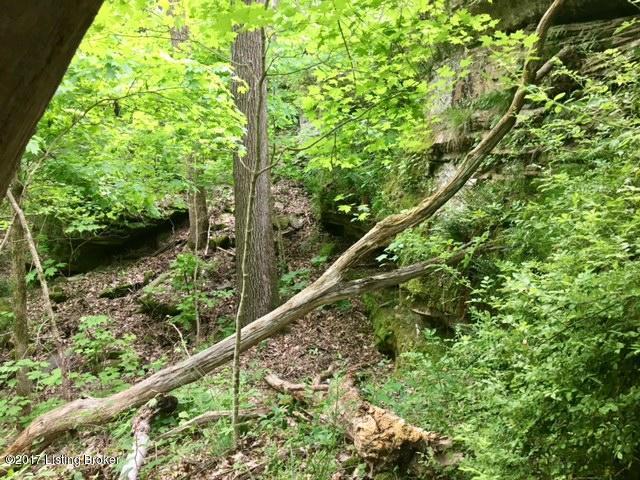 Additional photo for property listing at Mark Ridge Mark Ridge Harned, Kentucky 40144 United States