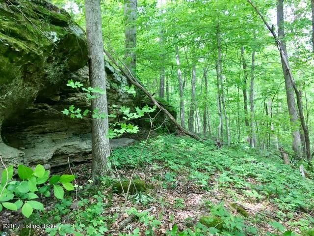 Additional photo for property listing at Mark Ridge  Harned, Kentucky 40144 United States