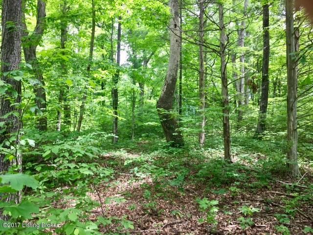 Land for Sale at Jack Monarch Lane Jack Monarch Lane Hardinsburg, Kentucky 40143 United States