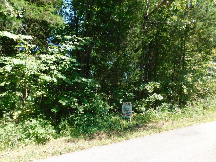 Land for Sale at 136 Highway 889 Clarkson, Kentucky 42726 United States