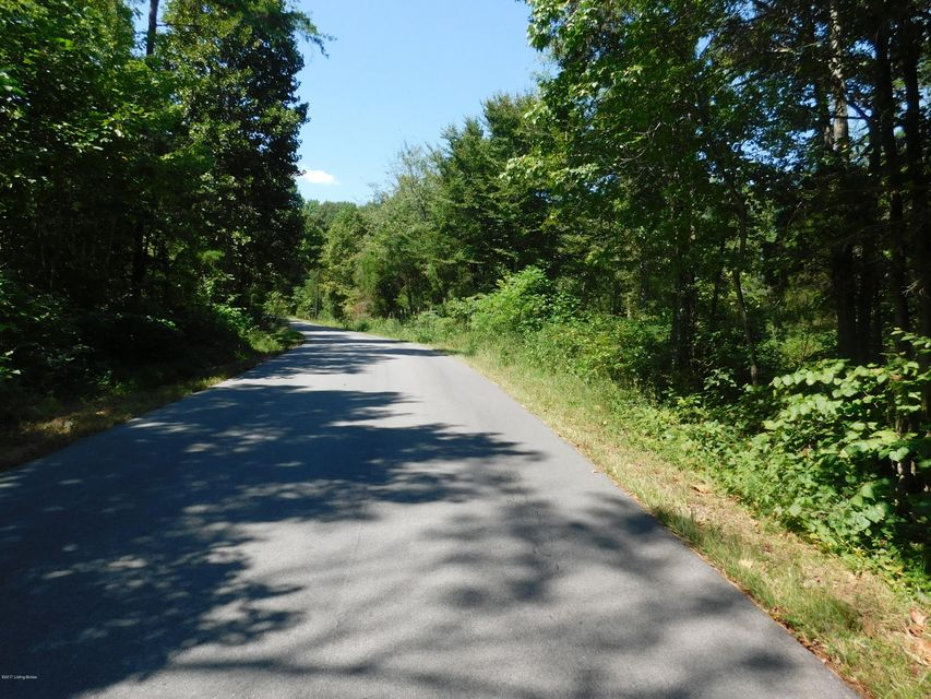 Additional photo for property listing at 136 Highway 889  Clarkson, Kentucky 42726 United States