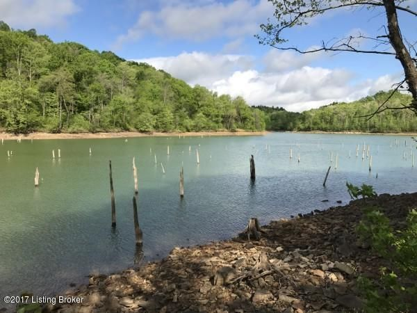 Land for Sale at 25 MOUTARDIER SHORES Leitchfield, Kentucky 42754 United States