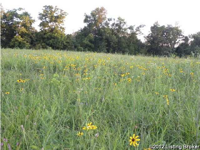Land for Sale at 31 Strike Hound Fisherville, Kentucky 40023 United States