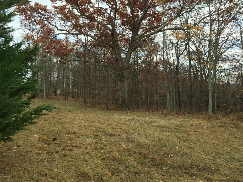 Land for Sale at Lot 5E E Hwy 42 La Grange, Kentucky 40031 United States