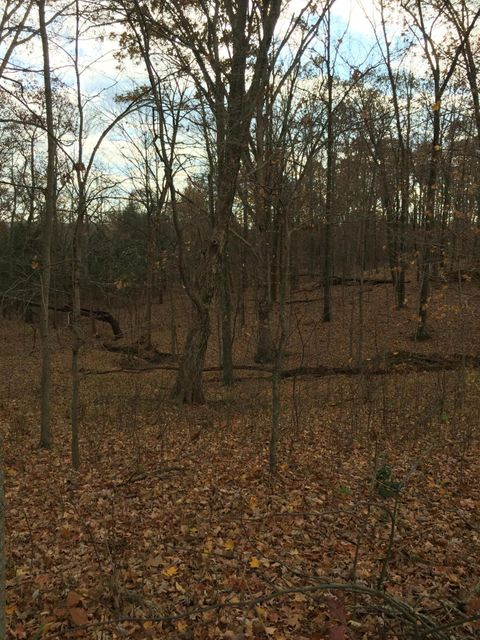 Additional photo for property listing at Lot 5E E Hwy 42  La Grange, Kentucky 40031 United States