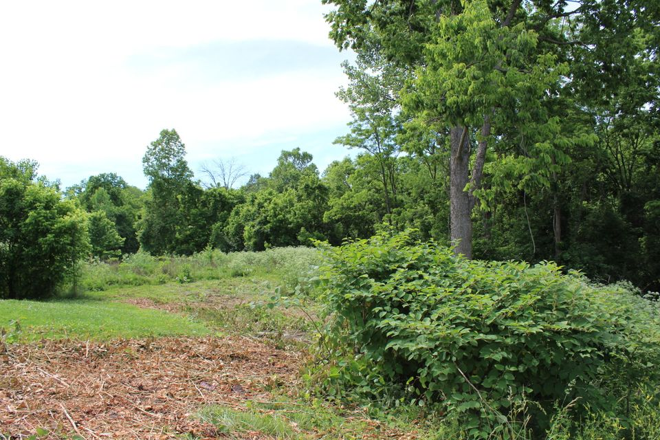 Land for Sale at 1818 Roosevelt Lyndon, Kentucky 40242 United States