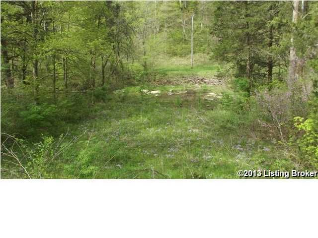 Additional photo for property listing at Long Branch  Turners Station, Kentucky 40075 United States