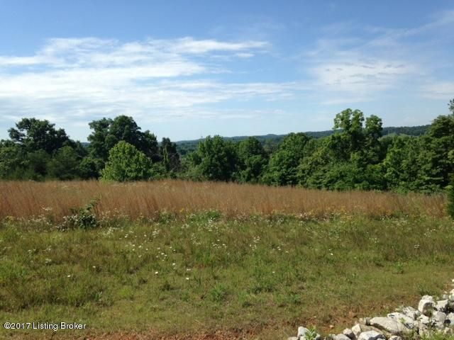 Land for Sale at 157 Country View 157 Country View Bonnieville, Kentucky 42713 United States