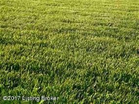 Land for Sale at LOT 30 THUNDER SPRINGS LOT 30 THUNDER SPRINGS Bardstown, Kentucky 40004 United States