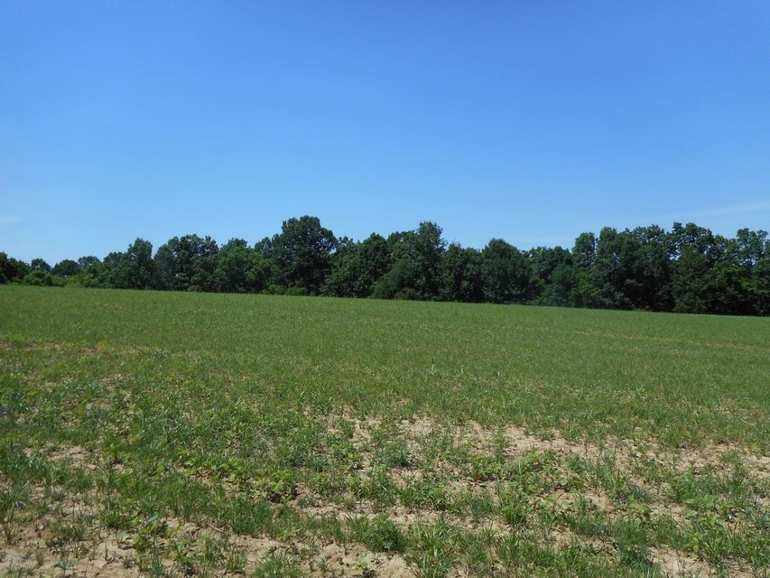Land for Sale at 1000 Lincoln 1000 Lincoln Taylorsville, Kentucky 40071 United States