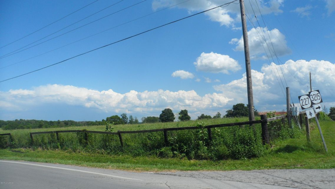 Land for Sale at Hwy 227 New Liberty, Kentucky 40355 United States