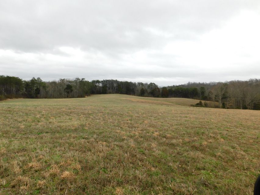 Land for Sale at Highway 889 Clarkson, Kentucky 42726 United States