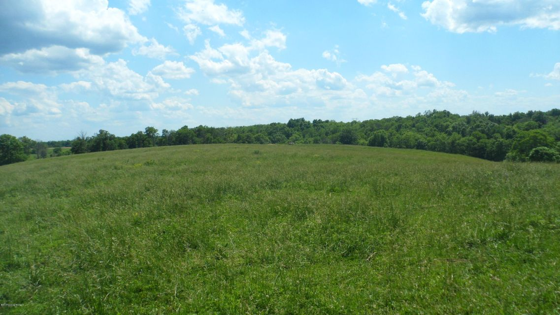 Farm / Ranch / Plantation for Sale at 1 Cull Road New Liberty, Kentucky 40355 United States