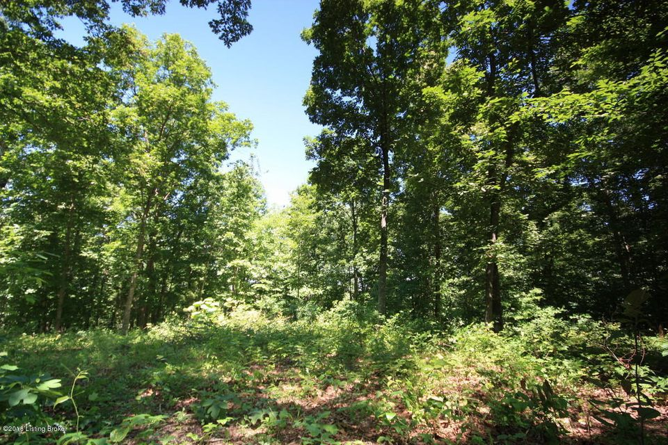 Land for Sale at 43A Furnace Branch 43A Furnace Branch Bee Spring, Kentucky 42207 United States