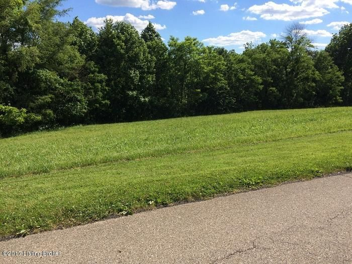 Land for Sale at Bray Ridge Bedford, Kentucky 40006 United States